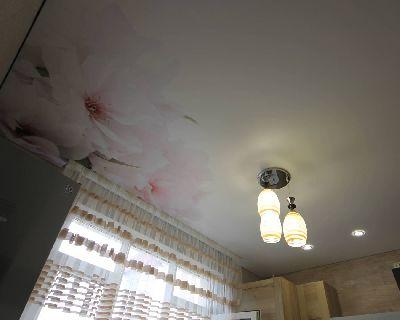 Фото печать на натяжных потолках, Натяжные потолки для кухни, Глянцевые натяжные потолки